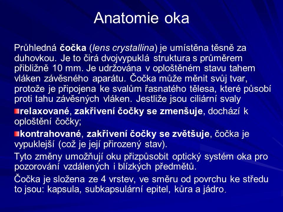 Anatomie oka Průhledná čočka (lens crystallina) je umístěna těsně za duhovkou.