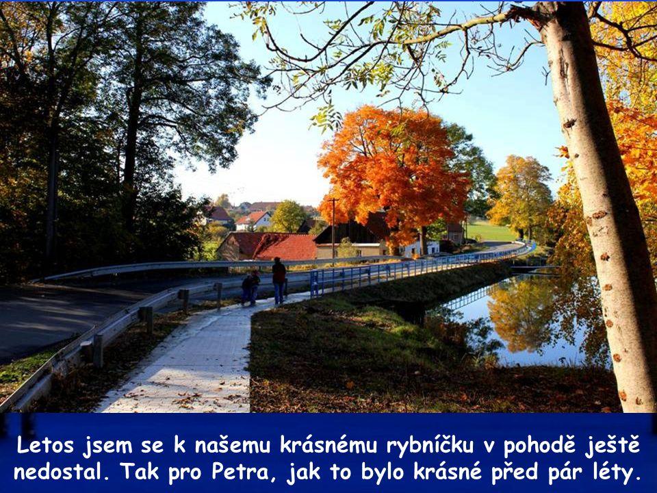 Jak to ty přírodo čaruješ, každý den nám jiný obraz maluješ.