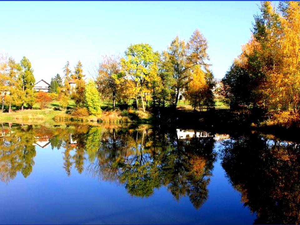 Jeden pohled od rybníku se mi moc líbil, tak jsem si ho namaloval.