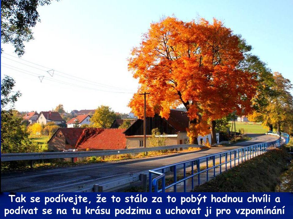 Tak se pomalu loučíme a těšíme se na další procházku. Přeji krásný podzimní den. A.J.