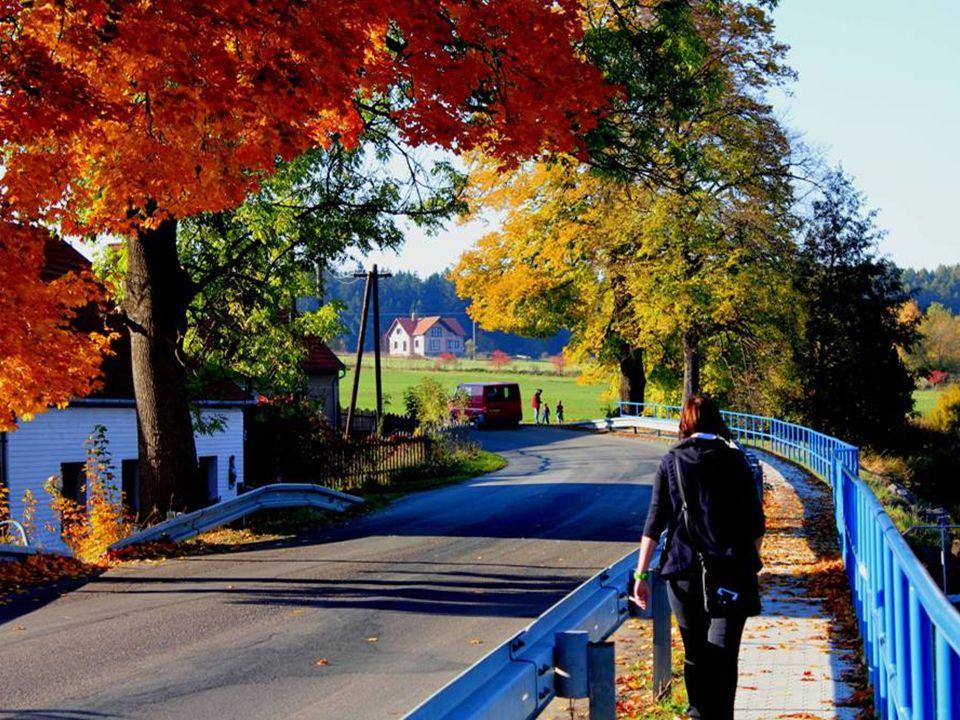 krásné barvy podzimu jsou skutečné