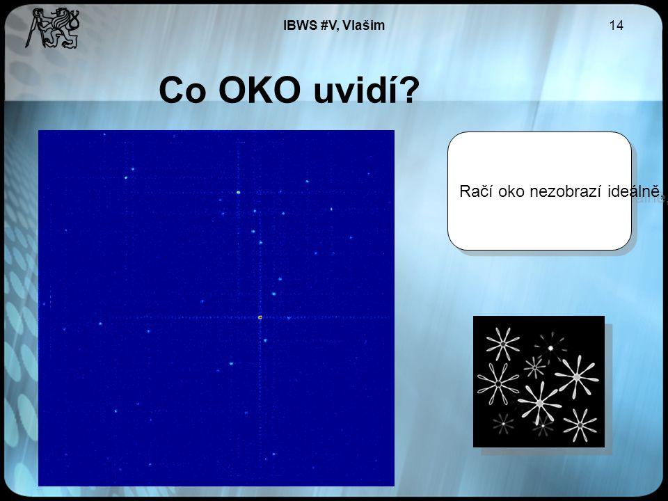 IBWS #V, Vlašim14 Co OKO uvidí Račí oko nezobrazí ideálně, přidá nám kříže.