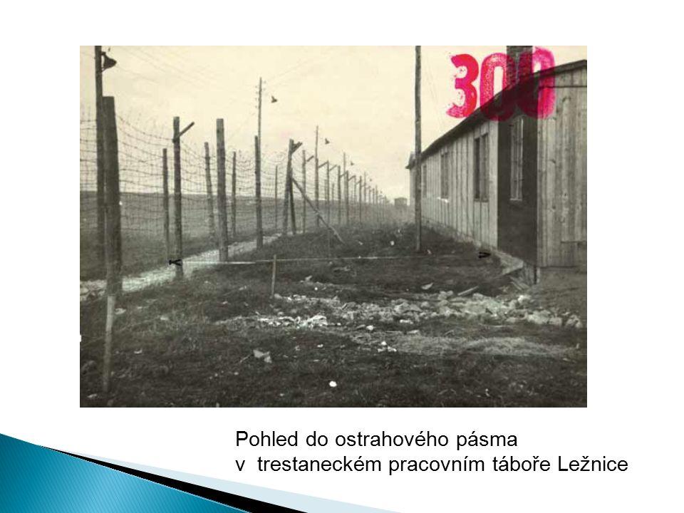 Pohled do ostrahového pásma v trestaneckém pracovním táboře Ležnice