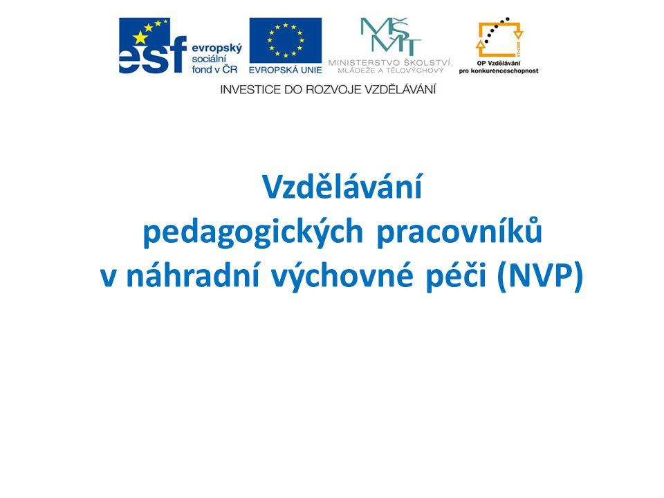 Průběh sestavení a realizace DVPP  Mapování vzdělávacích potřeb  Návrh koncepce vzdělávání pracovníků v NVP, tj.
