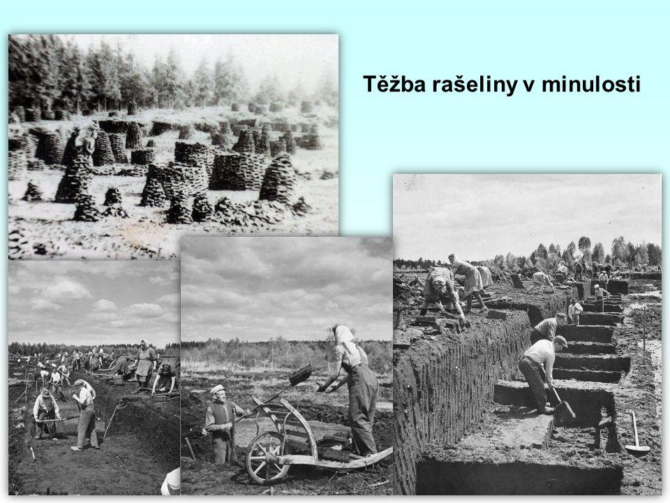 Těžba rašeliny v minulosti