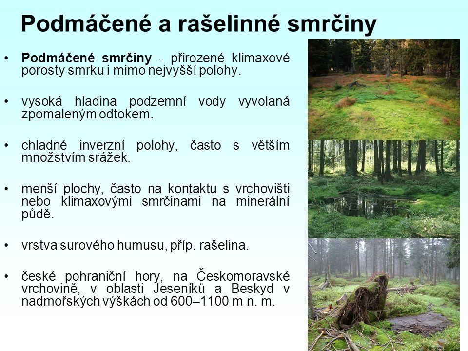 Podmáčené a rašelinné smrčiny Podmáčené smrčiny - přirozené klimaxové porosty smrku i mimo nejvyšší polohy.