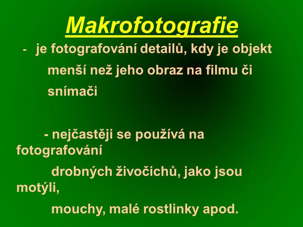 Makrofotografie - je fotografování detailů, kdy je objekt menší než jeho obraz na filmu či snímači - nejčastěji se používá na fotografování drobných živočichů, jako jsou motýli, mouchy, malé rostlinky apod.