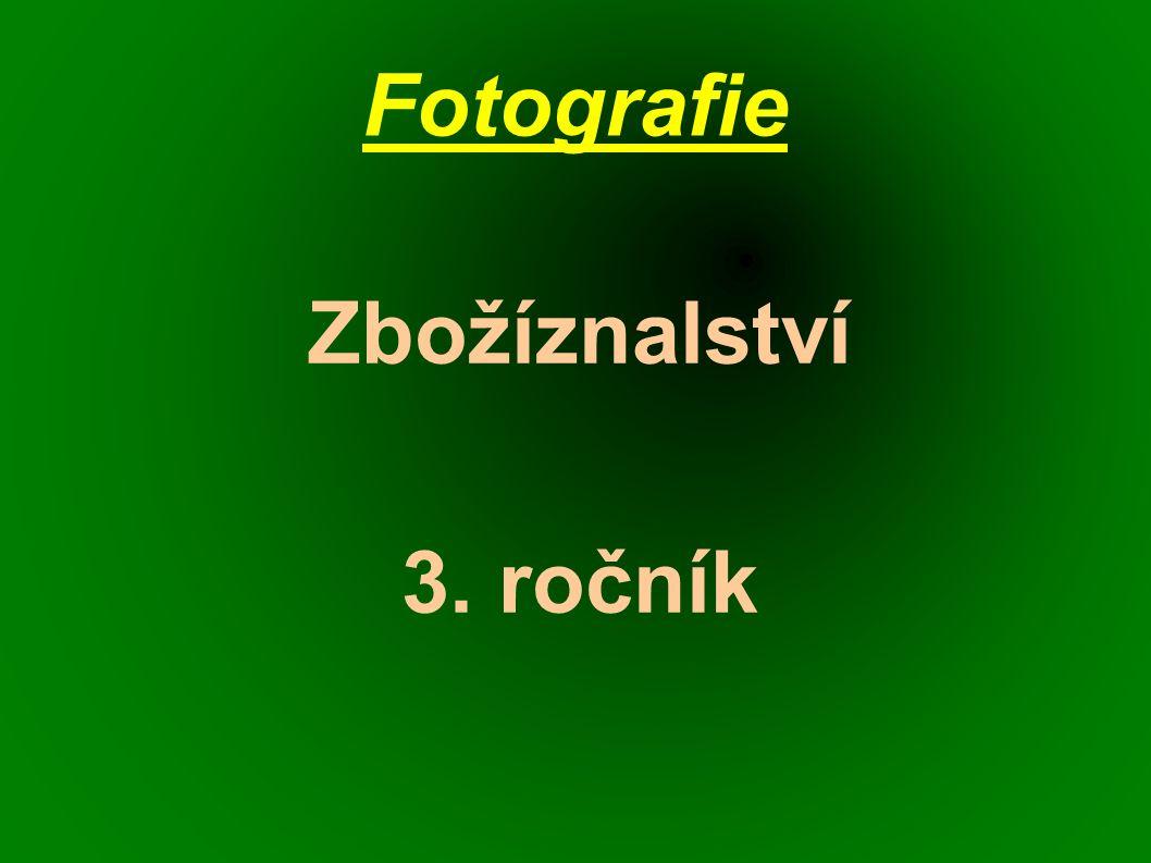 Fotografie Zbožíznalství 3. ročník