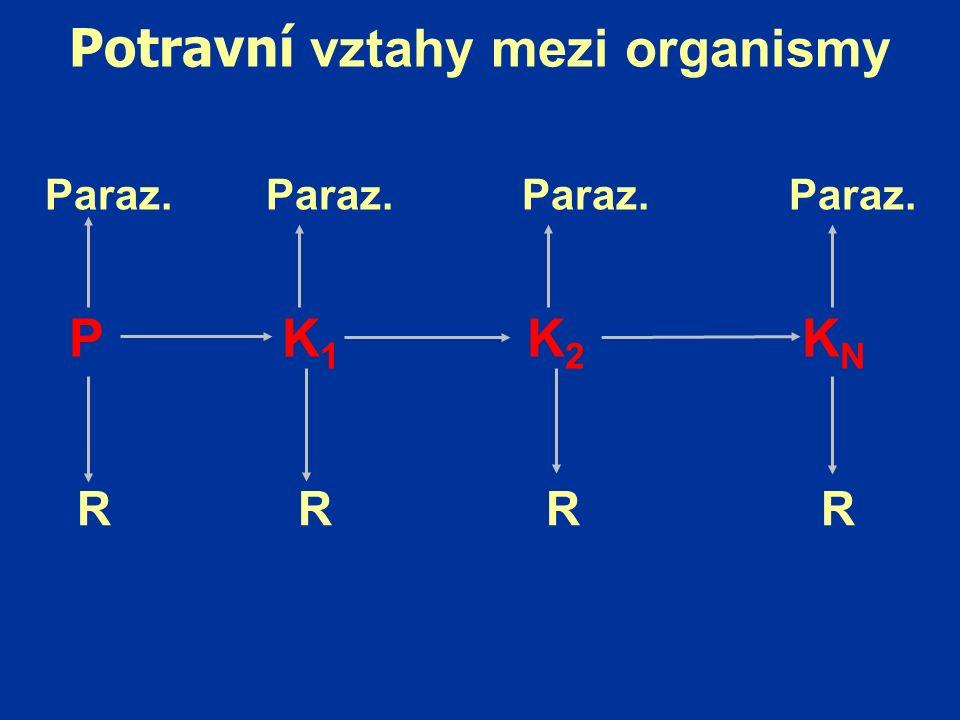 Potravní vztahy mezi organismy P K 1 K 2 K N Paraz. Paraz. Paraz. Paraz. R R R R