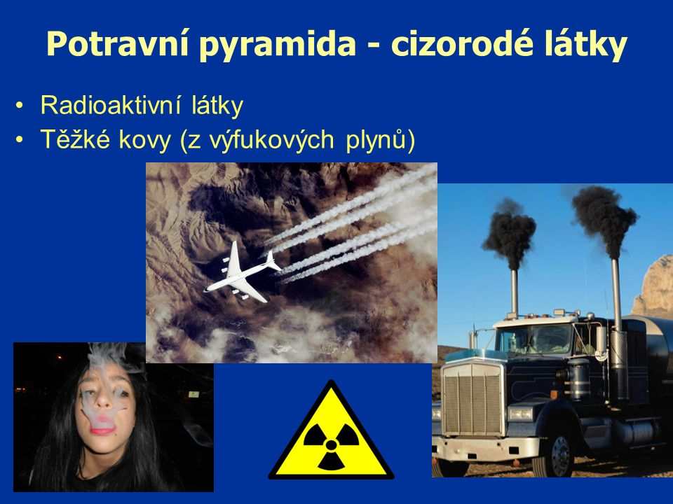 Potravní pyramida - cizorodé látky Radioaktivní látky Těžké kovy (z výfukových plynů)