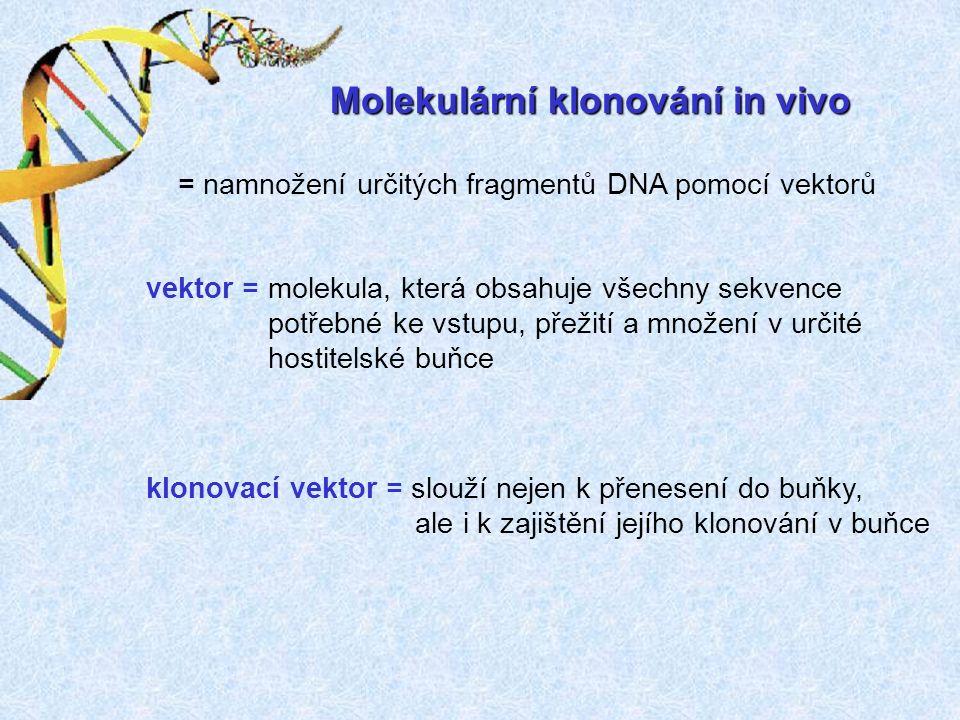 Molekulární klonování in vivo vektor = molekula, která obsahuje všechny sekvence potřebné ke vstupu, přežití a množení v určité hostitelské buňce klonovací vektor = slouží nejen k přenesení do buňky, ale i k zajištění jejího klonování v buňce = namnožení určitých fragmentů DNA pomocí vektorů