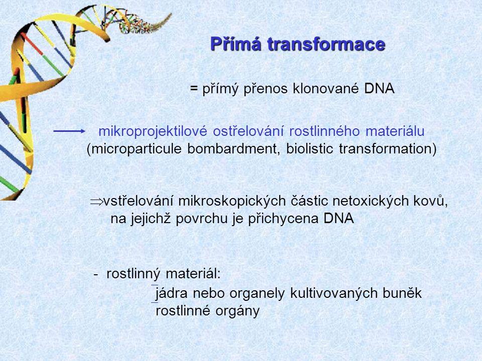 Přímá transformace = přímý přenos klonované DNA mikroprojektilové ostřelování rostlinného materiálu (microparticule bombardment, biolistic transformation) ` jádra nebo organely kultivovaných buněk ` rostlinné orgány - rostlinný materiál: Þ vstřelování mikroskopických částic netoxických kovů, na jejichž povrchu je přichycena DNA