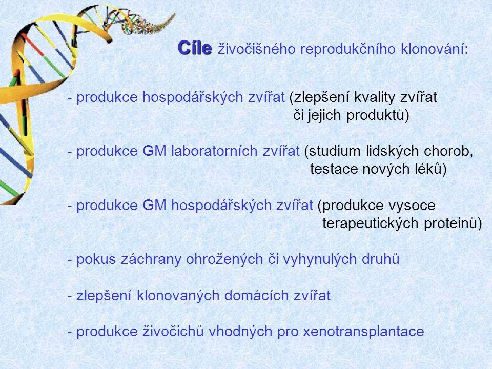 Cíle Cíle živočišného reprodukčního klonování: - produkce hospodářských zvířat (zlepšení kvality zvířat či jejich produktů) - produkce GM laboratorních zvířat (studium lidských chorob, testace nových léků) - produkce GM hospodářských zvířat (produkce vysoce terapeutických proteinů) - pokus záchrany ohrožených či vyhynulých druhů - zlepšení klonovaných domácích zvířat - produkce živočichů vhodných pro xenotransplantace