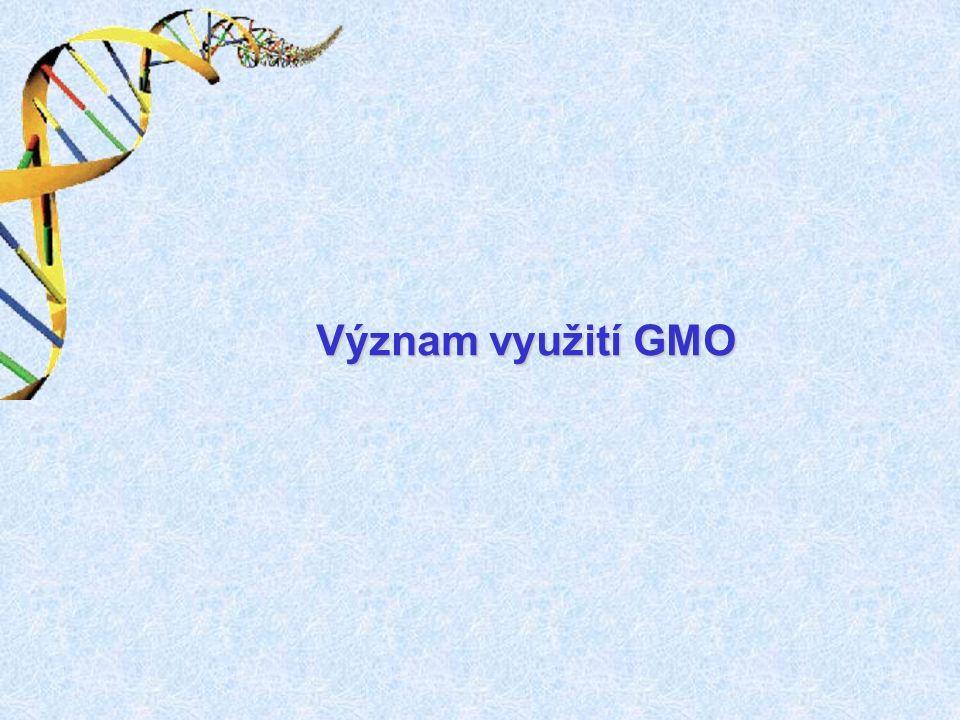 Význam GMO farmacie a medicína: farmacie a medicína: - výroba léčiv (inzulín, lidský růstový hormon, srážlivý faktor...) - studium chorob a vývoj léků zemědělství, zemědělsko-potravinářská odvětví: zemědělství, zemědělsko-potravinářská odvětví: - zlepšení technologických vlastností (odolnost herbicidům, houbovým a virovým chorobám, škůdcům, zvýšení nutriční hodnoty …) - produkce farmaceuticky využitelných látek (obsah a kvalita lipidů a škrobu …)