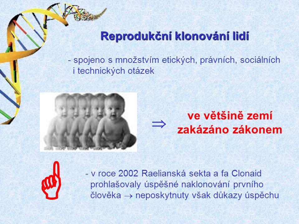 Klinické uplatnění terapeutického klonování se očekává během cca 10 let.
