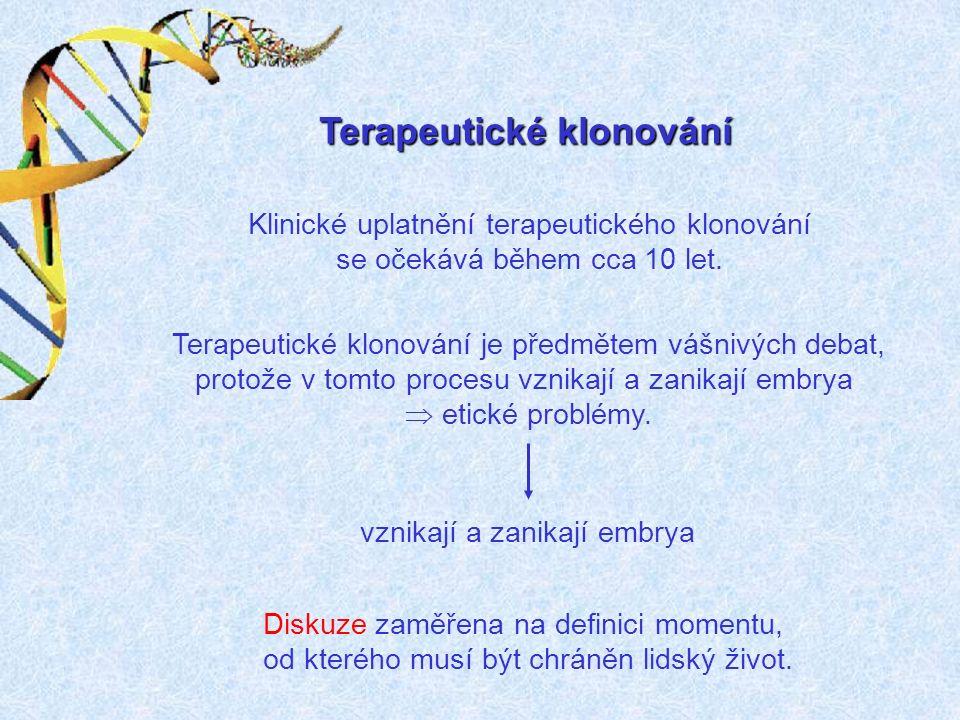 Schválené transgenní plodiny v ČR
