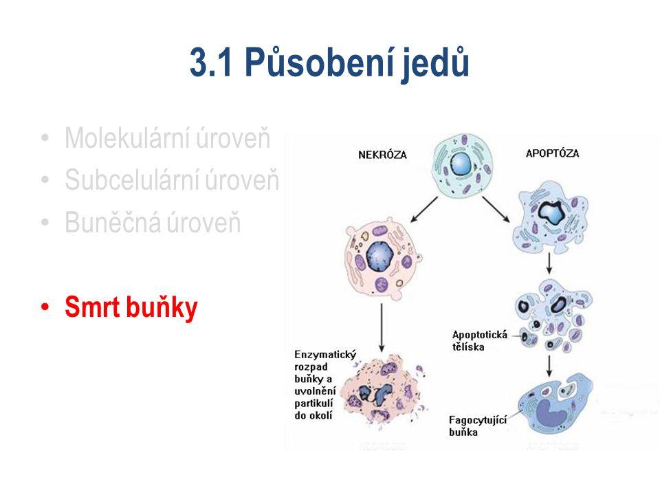 3.1 Působení jedů Molekulární úroveň Subcelulární úroveň Buněčná úroveň Smrt buňky