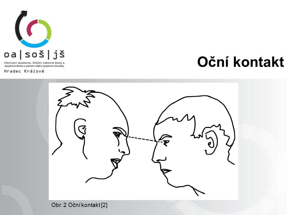 Oční kontakt Obr. 2 Oční kontakt [2]