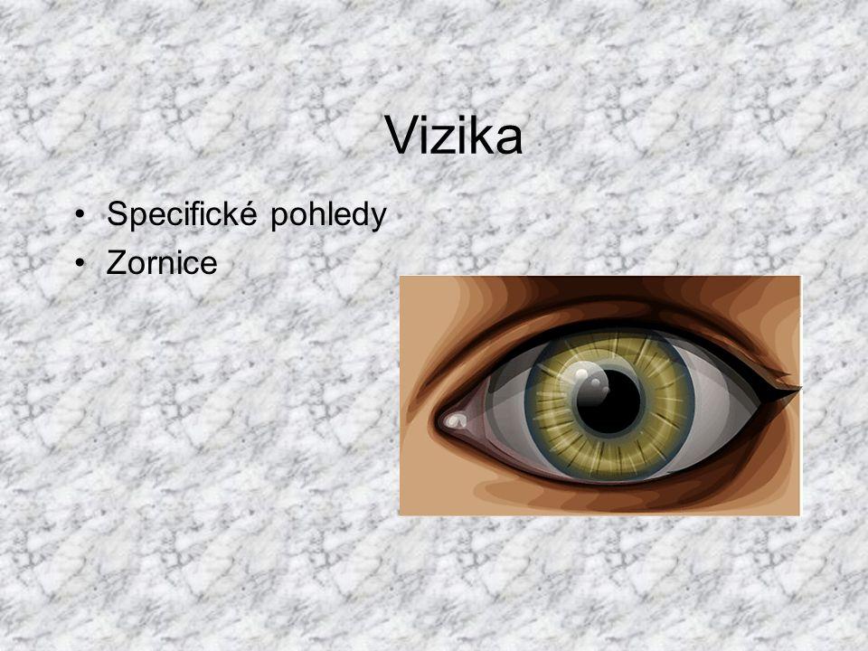 Specifické pohledy Zornice Vizika