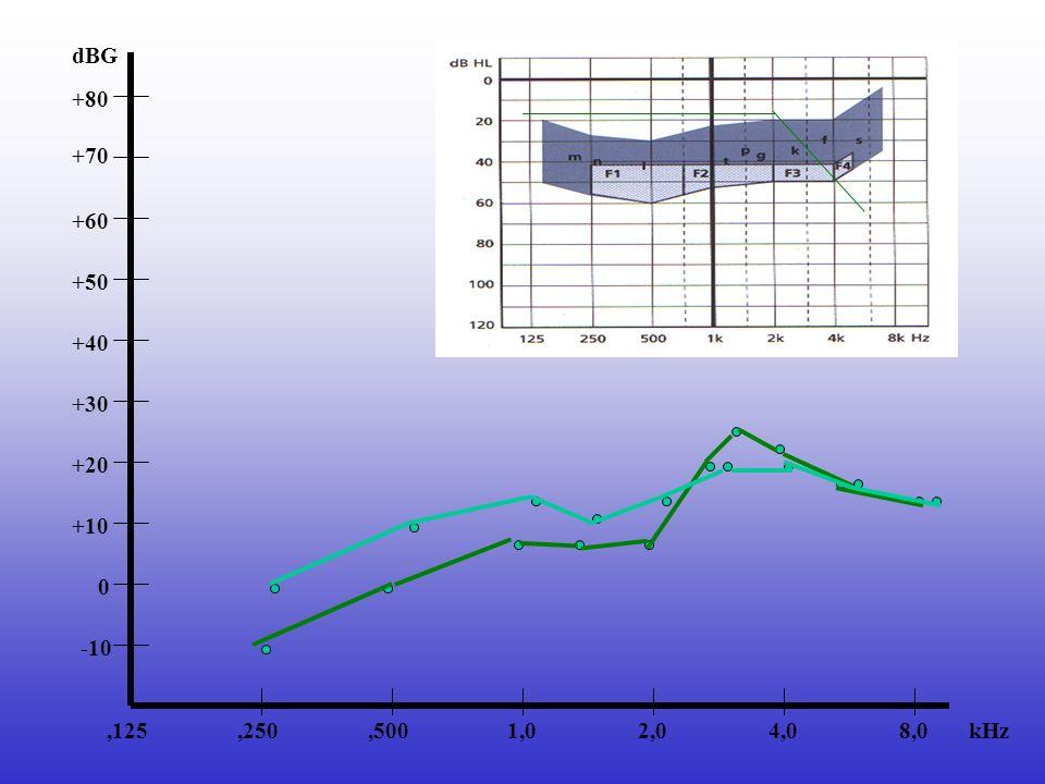 +60 8,04,02,01,0,500,250,125 +70 +50 +40 +30 +20 -10 0 +10 +80 dBG kHz