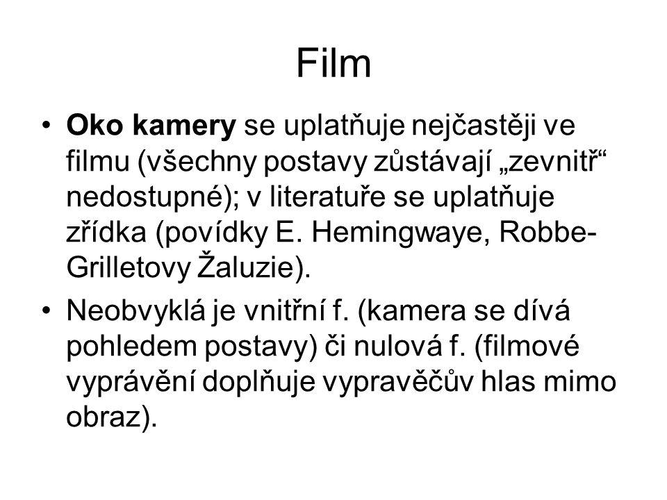 """Film Oko kamery se uplatňuje nejčastěji ve filmu (všechny postavy zůstávají """"zevnitř nedostupné); v literatuře se uplatňuje zřídka (povídky E."""
