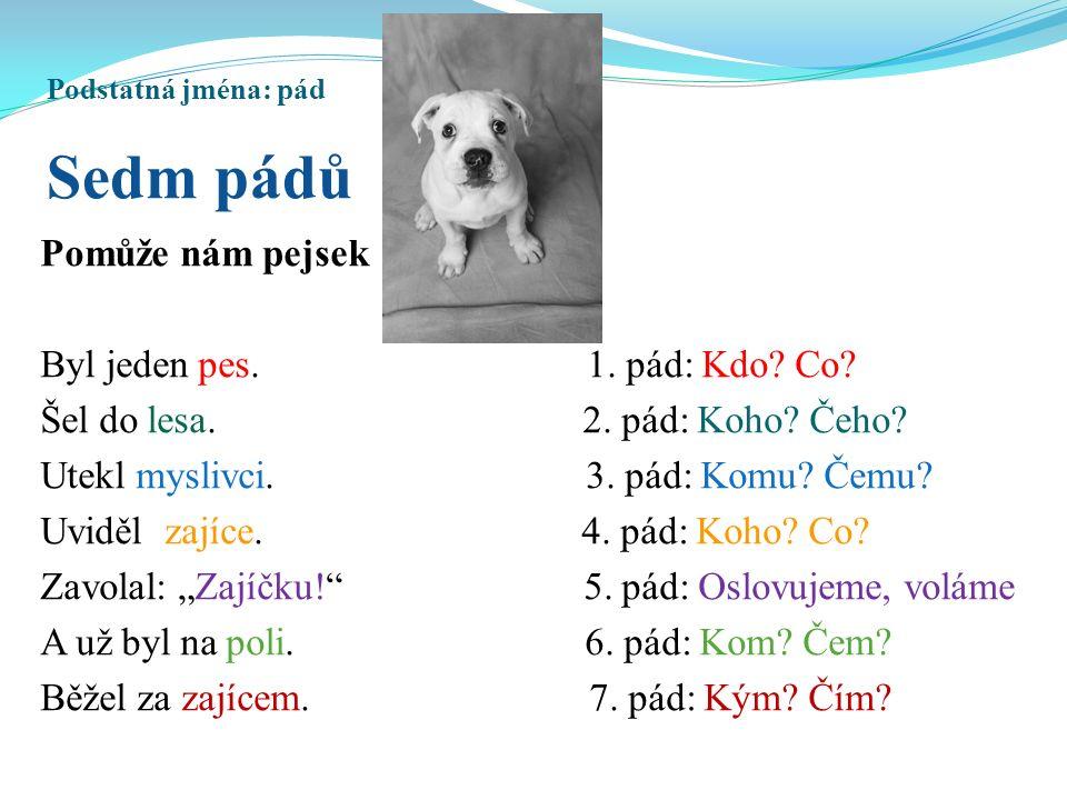 Podstatná jména: pád Sedm pádů Pomůže nám pejsek Byl jeden pes.