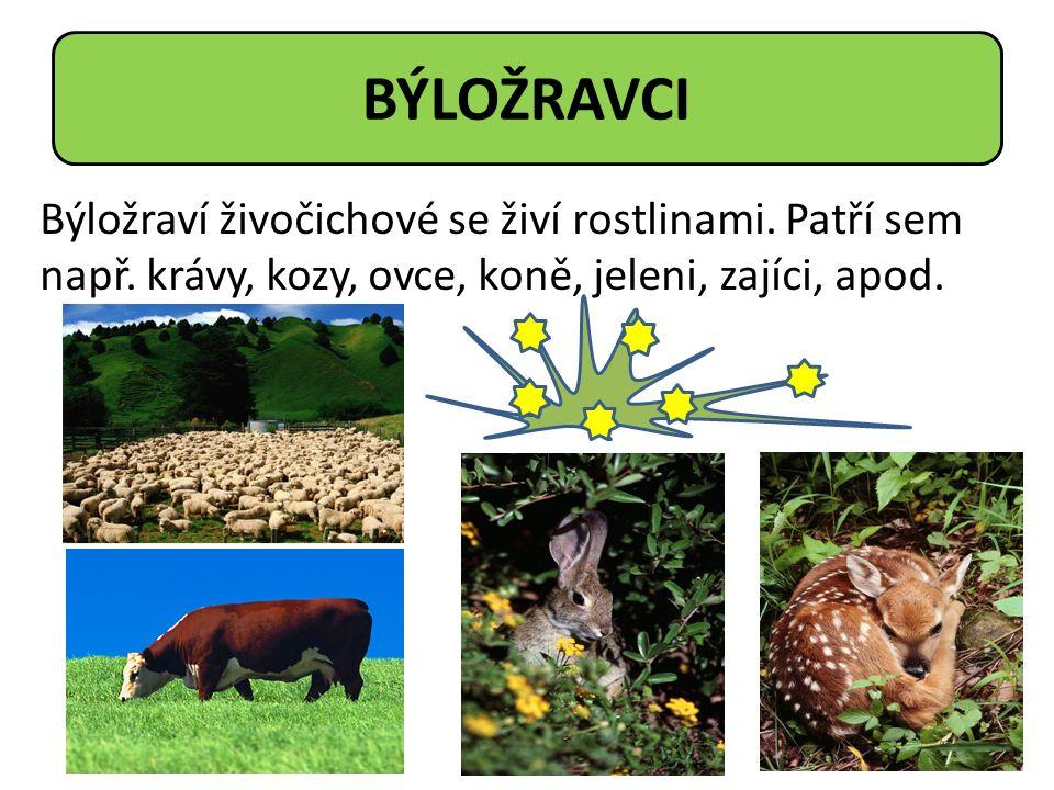 Býložraví živočichové se živí rostlinami. Patří sem např. krávy, kozy, ovce, koně, jeleni, zajíci, apod. BÝLOŽRAVCI
