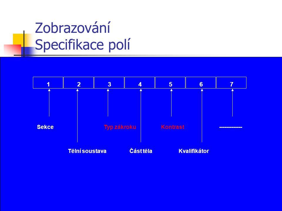 Zobrazování Specifikace polí 1234567 Sekce Tělní soustava Typ zákrokuKontrast Kvalifikátor ------------- Část těla