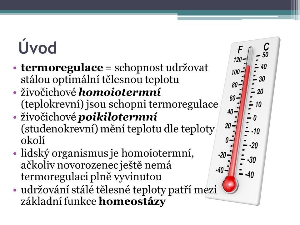 Úvod termoregulace = schopnost udržovat stálou optimální tělesnou teplotu živočichové homoiotermní (teplokrevní) jsou schopni termoregulace živočichové poikilotermní (studenokrevní) mění teplotu dle teploty okolí lidský organismus je homoiotermní, ačkoliv novorozenec ještě nemá termoregulaci plně vyvinutou udržování stálé tělesné teploty patří mezi základní funkce homeostázy