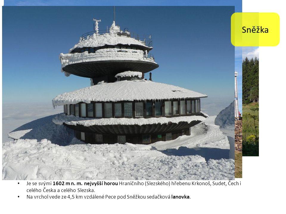Je se svými 1602 m n. m. nejvyšší horou Hraničního (Slezského) hřebenu Krkonoš, Sudet, Čech i celého Česka a celého Slezska. Na vrchol vede ze 4,5 km