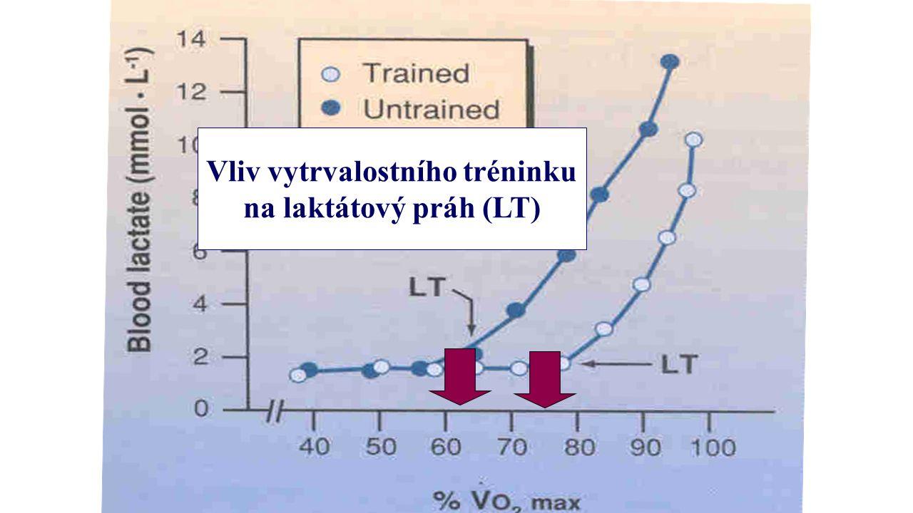 Vliv vytrvalostního tréninku na laktátový práh (LT)