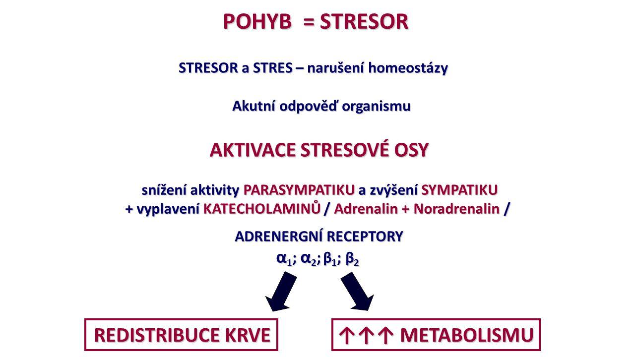 POHYB = STRESOR STRESOR a STRES – narušení homeostázy STRESOR a STRES – narušení homeostázy Akutní odpověď organismu Akutní odpověď organismu AKTIVACE STRESOVÉ OSY AKTIVACE STRESOVÉ OSY snížení aktivity PARASYMPATIKU a zvýšení SYMPATIKU snížení aktivity PARASYMPATIKU a zvýšení SYMPATIKU + vyplavení KATECHOLAMINŮ / Adrenalin + Noradrenalin / ADRENERGNÍ RECEPTORY ADRENERGNÍ RECEPTORY α 1 ; α 2 ; β 1 ; β 2 REDISTRIBUCE KRVE REDISTRIBUCE KRVE ↑↑↑ METABOLISMU