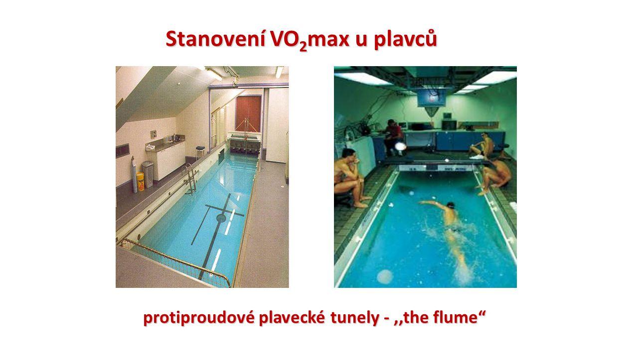 Stanovení VO 2 max u plavců protiproudové plavecké tunely -,,the flume