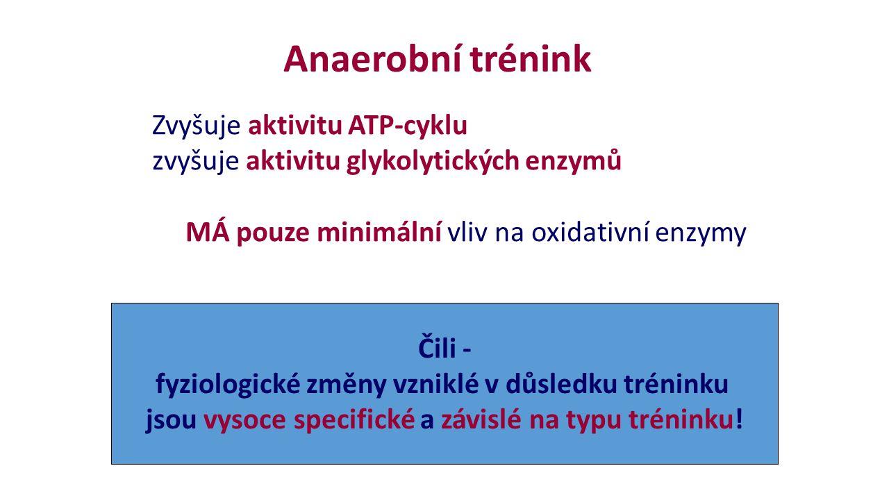 Anaerobní trénink Zvyšuje aktivitu ATP-cyklu zvyšuje aktivitu glykolytických enzymů MÁ pouze minimální vliv na oxidativní enzymy Čili - fyziologické změny vzniklé v důsledku tréninku jsou vysoce specifické a závislé na typu tréninku!