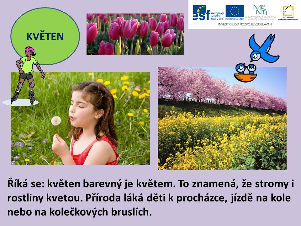 KVĚTEN Říká se: květen barevný je květem. To znamená, že stromy i rostliny kvetou. Příroda láká děti k procházce, jízdě na kole nebo na kolečkových br