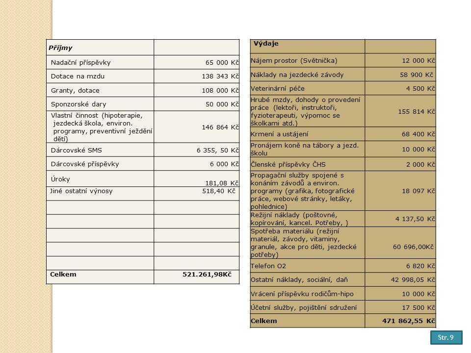 HOSPODAŘENÍ ORGANIZACE ZA ROK 2013 Příjmy Nadační příspěvky65 000 Kč Dotace na mzdu138 343 Kč Granty, dotace108 000 Kč Sponzorské dary50 000 Kč Vlastní činnost (hipoterapie, jezdecká škola, environ.