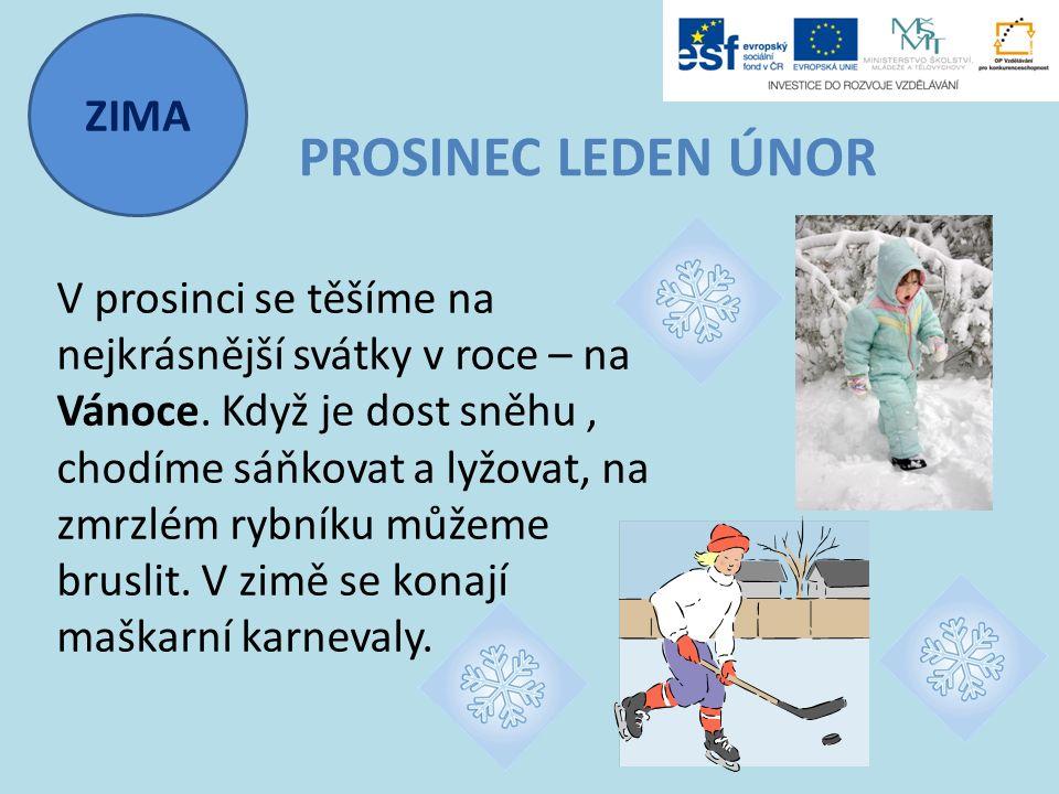 ZIMA PROSINEC LEDEN ÚNOR V prosinci se těšíme na nejkrásnější svátky v roce – na Vánoce. Když je dost sněhu, chodíme sáňkovat a lyžovat, na zmrzlém ry