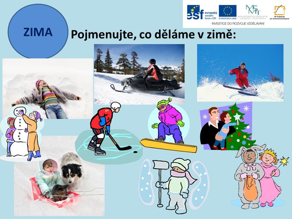ZIMA Pojmenujte, co děláme v zimě: