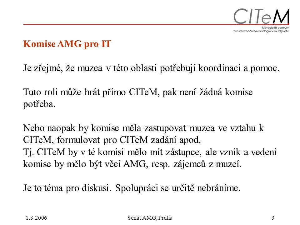 1.3.2006Senát AMG, Praha3 Komise AMG pro IT Je zřejmé, že muzea v této oblasti potřebují koordinaci a pomoc.