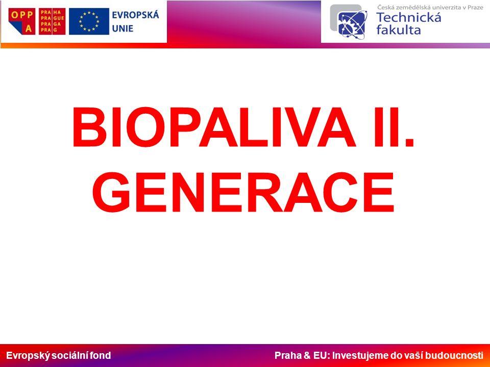 Evropský sociální fond Praha & EU: Investujeme do vaší budoucnosti BIOPALIVA II. GENERACE