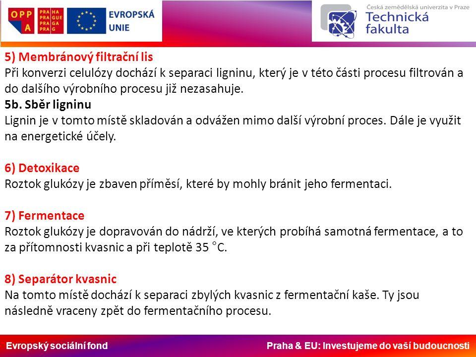 Evropský sociální fond Praha & EU: Investujeme do vaší budoucnosti 5) Membránový filtrační lis Při konverzi celulózy dochází k separaci ligninu, který je v této části procesu filtrován a do dalšího výrobního procesu již nezasahuje.