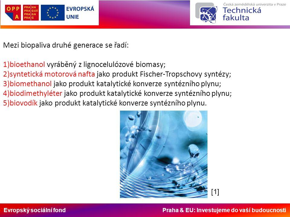 Evropský sociální fond Praha & EU: Investujeme do vaší budoucnosti Mezi biopaliva druhé generace se řadí: 1)bioethanol vyráběný z lignocelulózové biomasy; 2)syntetická motorová nafta jako produkt Fischer-Tropschovy syntézy; 3)biomethanol jako produkt katalytické konverze syntézního plynu; 4)biodimethyléter jako produkt katalytické konverze syntézního plynu; 5)biovodík jako produkt katalytické konverze syntézního plynu.