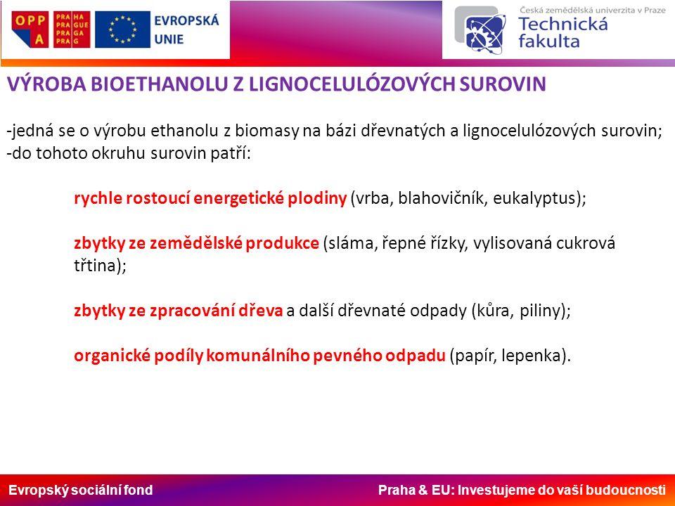 Evropský sociální fond Praha & EU: Investujeme do vaší budoucnosti VÝROBA BIOETHANOLU Z LIGNOCELULÓZOVÝCH SUROVIN -jedná se o výrobu ethanolu z biomasy na bázi dřevnatých a lignocelulózových surovin; -do tohoto okruhu surovin patří: rychle rostoucí energetické plodiny (vrba, blahovičník, eukalyptus); zbytky ze zemědělské produkce (sláma, řepné řízky, vylisovaná cukrová třtina); zbytky ze zpracování dřeva a další dřevnaté odpady (kůra, piliny); organické podíly komunálního pevného odpadu (papír, lepenka).