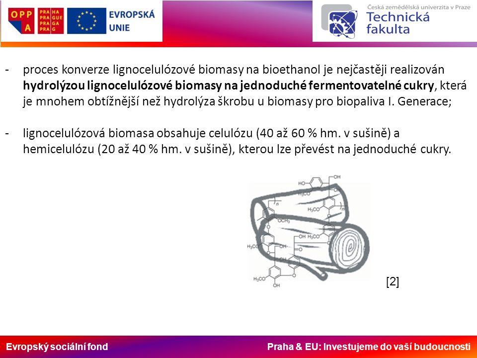 Evropský sociální fond Praha & EU: Investujeme do vaší budoucnosti -pro konverzi fermentovatelných frakcí celulózy a hemicelulózy bylo vyvinuto několik technologických postupů; -dřevo nebo sláma se nejprve drcením nebo mletím rozmělní na menší kusy, které se podrobí termochemické předúpravě; -v dalším kroku probíhá konverze takto předupravené celulózy a hemicelulózy na jednoduché cukry.