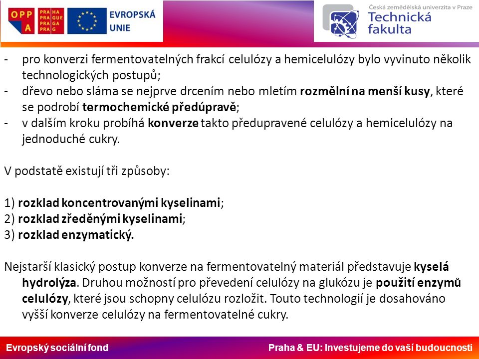 Evropský sociální fond Praha & EU: Investujeme do vaší budoucnosti Výroba bioethanolu probíhá v následujících krocích: 1) Sklad biomasy Vstupní biomasa, nejčastěji ve formě dřevní štěpky nebo slámy, je dopravena do továrny a skladována v kontejnerech.