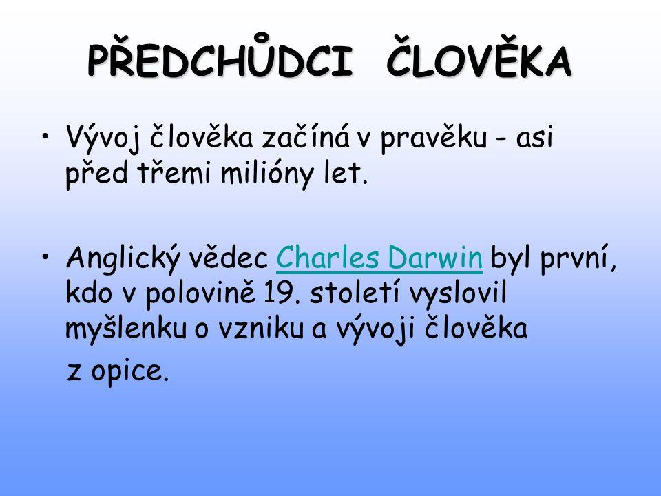 PŘEDCHŮDCI ČLOVĚKA Vývoj člověka začíná v pravěku - asi před třemi milióny let. Anglický vědec Charles Darwin byl první, kdo v polovině 19. století vy