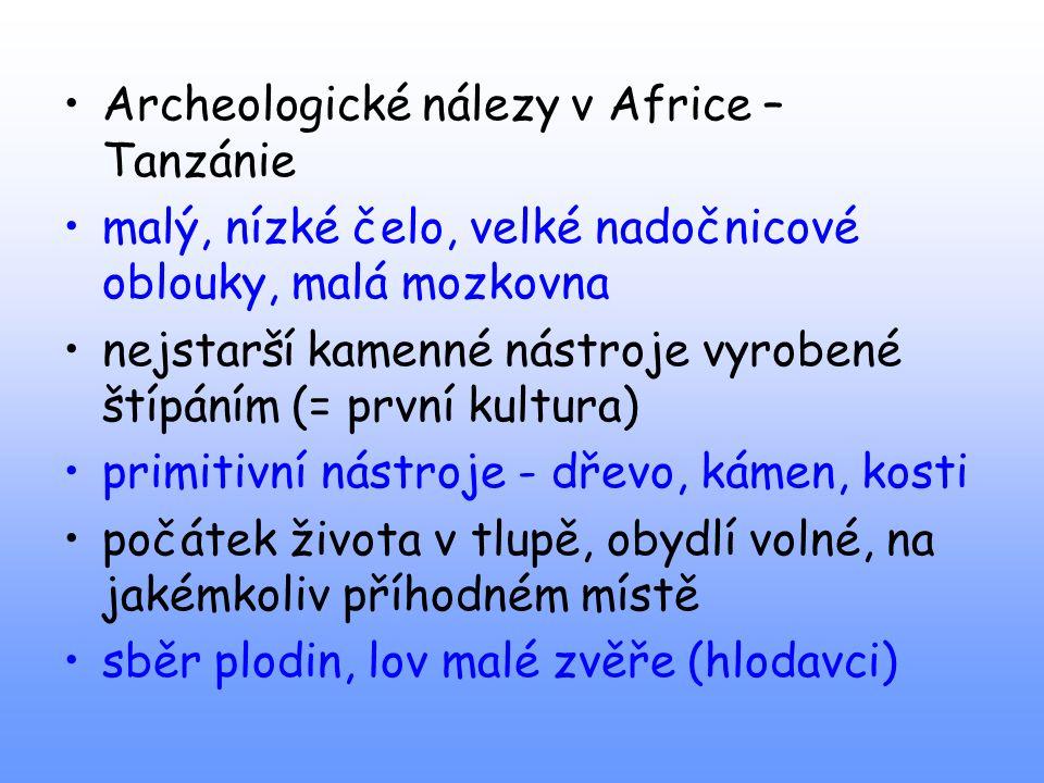Archeologické nálezy v Africe – Tanzánie malý, nízké čelo, velké nadočnicové oblouky, malá mozkovna nejstarší kamenné nástroje vyrobené štípáním (= pr