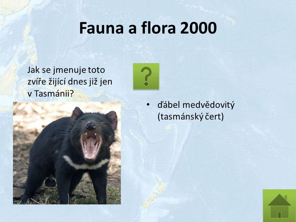 Fauna a flora 2000 Jak se jmenuje toto zvíře žijící dnes již jen v Tasmánii.