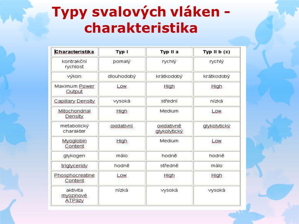 Typy svalových vláken - charakteristika