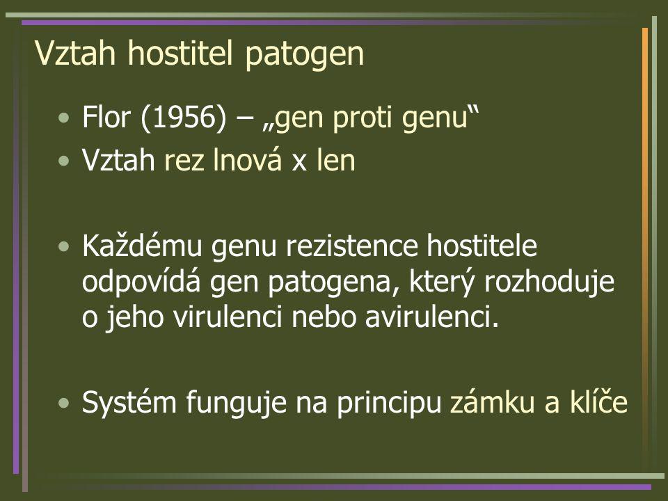 """Vztah hostitel patogen Flor (1956) – """"gen proti genu"""" Vztah rez lnová x len Každému genu rezistence hostitele odpovídá gen patogena, který rozhoduje o"""